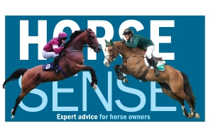 Horse sense logo July 16 for web 2